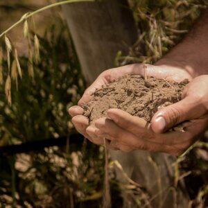 Argentina's Domaine Bousquet Going Biodynamic and Seeking B-Corp Certification